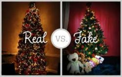 Christmas real fake