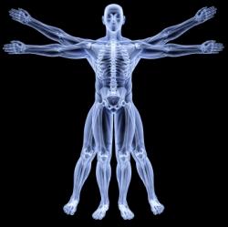 vitruvian man under X-rays. isolated on black.