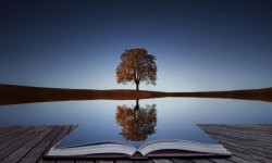 a-tree-reflection-in-water-book-694x417